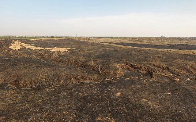 Be'eri Nature Reserve after kite fires