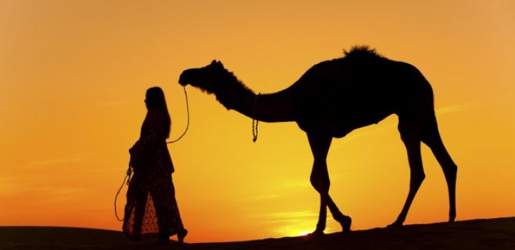 Camel-kills-woman.jpg