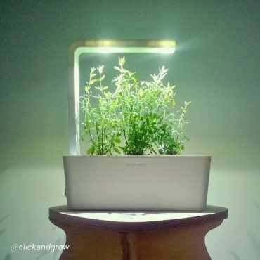 """""""Smart herb garden"""" by Click & Grow will make you dumb"""
