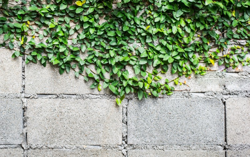 Eco-friendly concrete now mandatory in Dubai