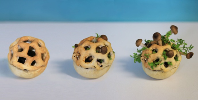 Dprinting With Living Organisms Snack Of Tomorrow Green Prophet - 3d printed edible food grows eat