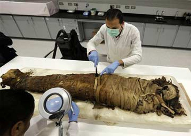 Egyptian-mummies-found-in-sewage