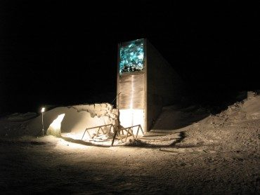 The war that forces a doomsday seed vault withdrawal