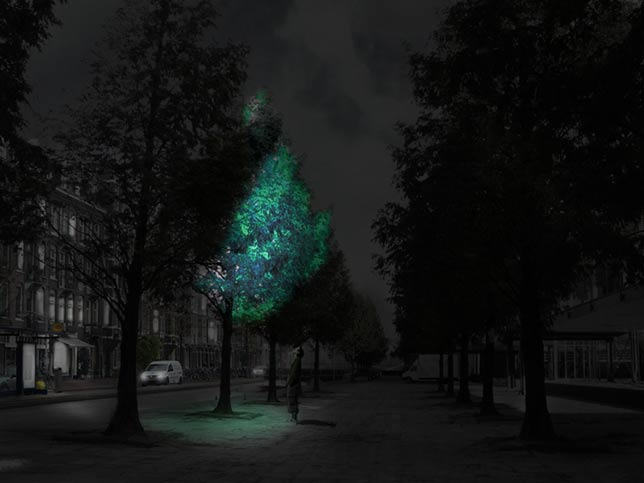 Safely swap your streetlight for a glowing tree?