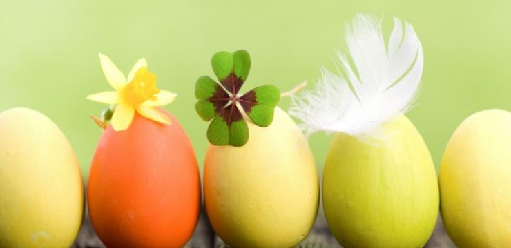Green-Monday-Kicks-Off-Middle-East-Easter.jpg