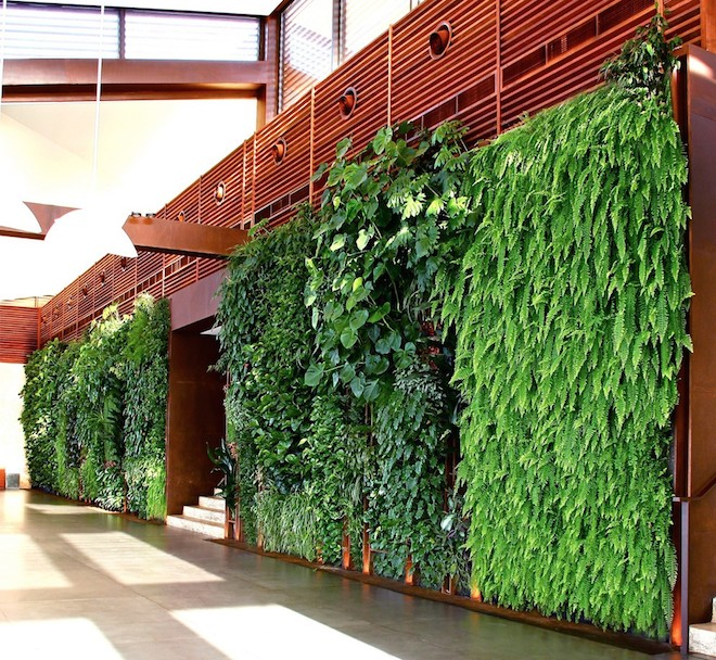 Vertical gardens in Lebanon based on traditional Arabia ...