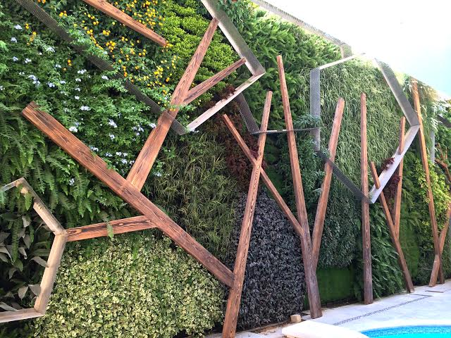 HS-residence-Cairo-Green-Studios-living-wall