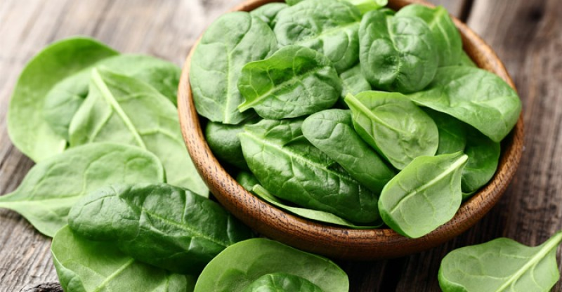 spinach as a biofuel