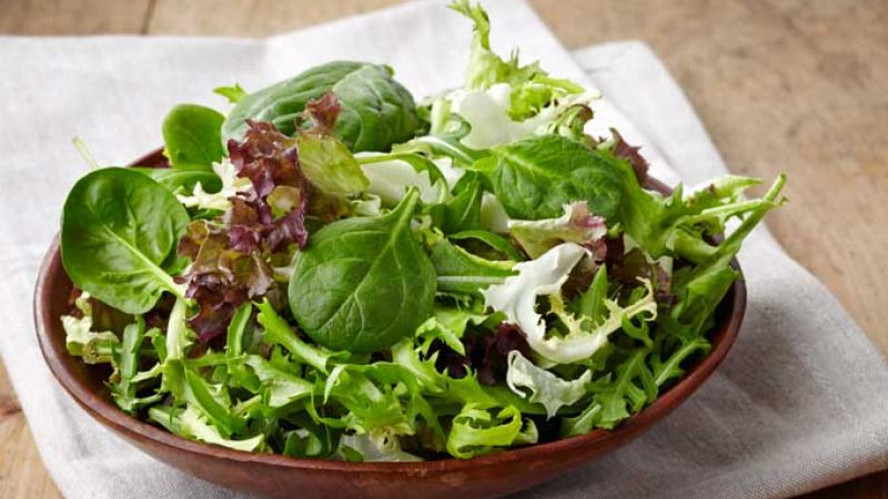 Ready-washed bags of salad? Best used as compost!