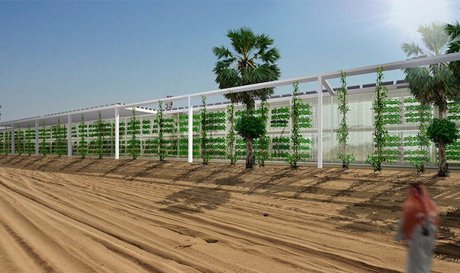 Linear-hydroponic-farm-in-Arabian-Peninsula-by-Forwrd-Thinking-Architecture-1.jpg