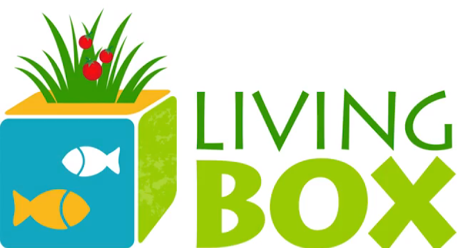 hydroponics, aquaponics, LivingBox, Pears Challenge, Green Living, Israel, urban agriculture, grow food without soil