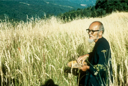 Masanobu Fukuoka was a Japanese farmer and philosopher celebrated for his natural farming and re-vegetation of desertified lands.