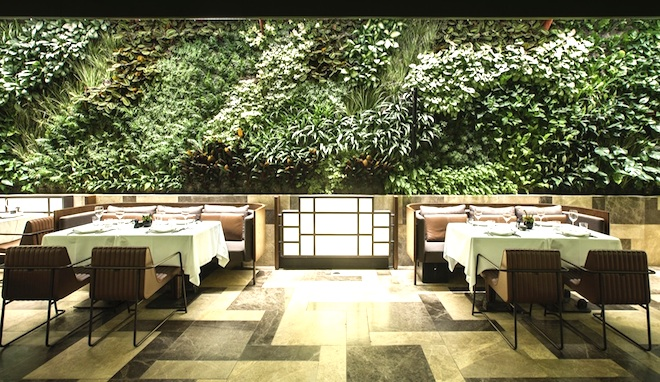 Nopa Restaurant, Autoban, interior design, green wall, vertical garden, wraparound green wall, Istanbul, Turkey