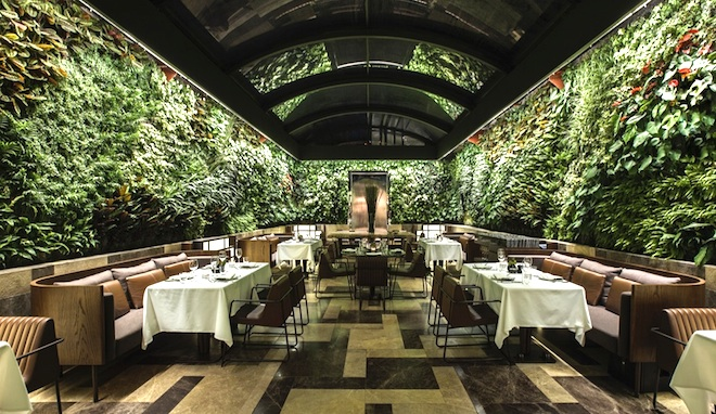 Wraparound wall of plants livens up istanbul 39 s bespoke for Cuisine on the green