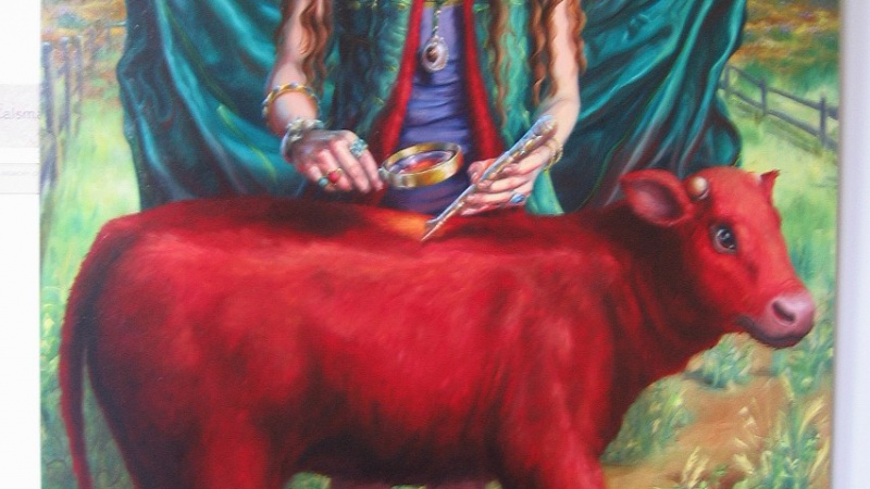 Holy cow! Prophecy fulfilled after red heifer is born at Temple of Israel