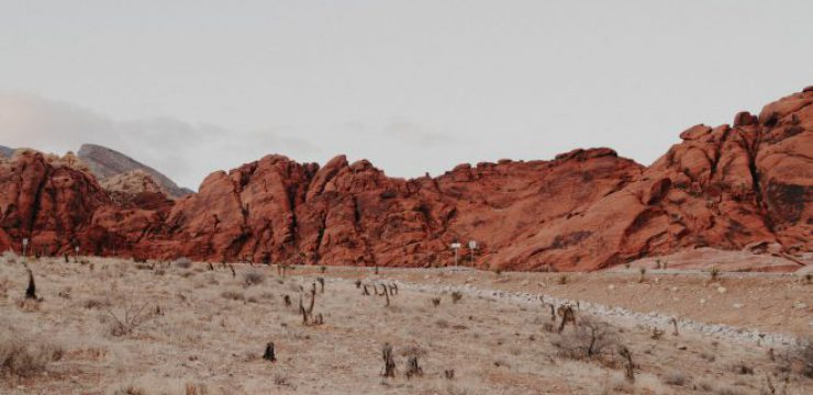 Red-Rock-Canyon-National-Conservation-Area-Las-Vegas-United-States-scaled.jpg