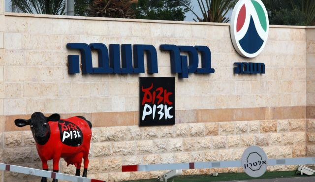 China buys Israel's largest food producer putting Zionists on edge
