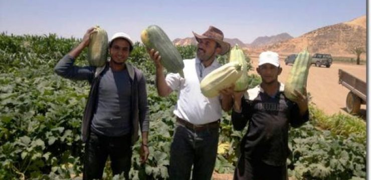 Wadi-Rum-farmers-with-squash.jpg