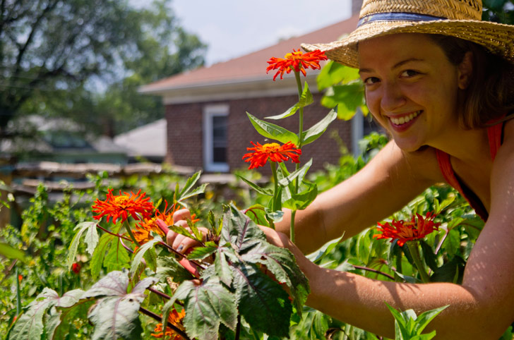 Urban Farm School teaches you how to grow food in your city.
