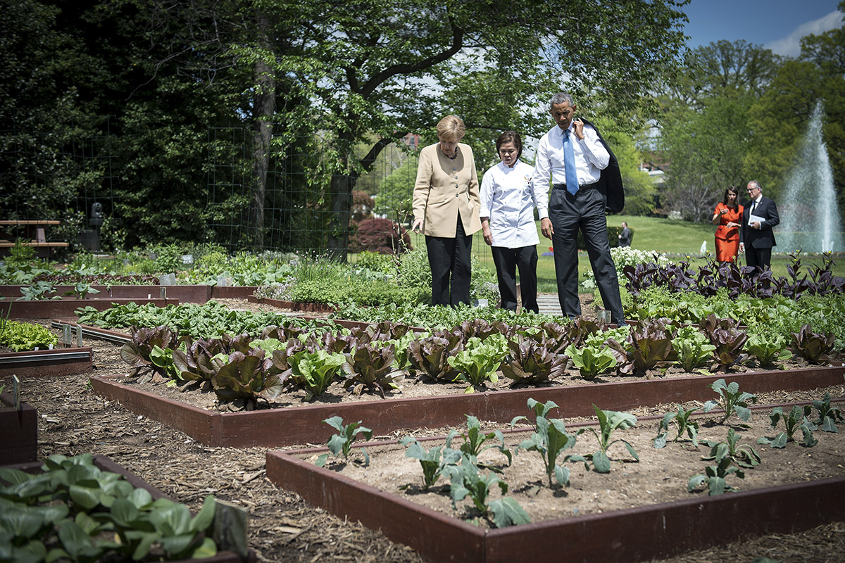 Michelle Obama 39 S White House Garden Will Grow On Huffpost