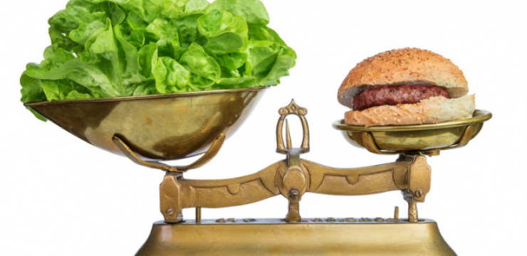 beef-scale-lettuce-cost-660x4331.png