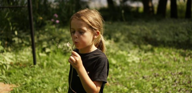 boy-wish-blow-dandelion.jpg