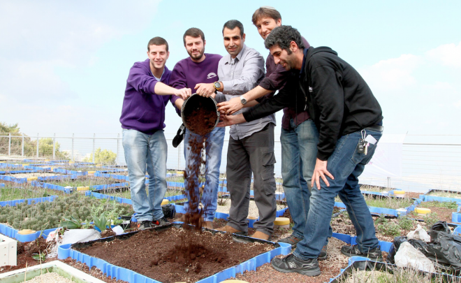 green roof coffee grounds