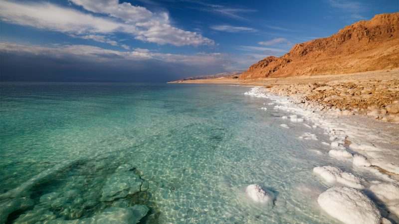 Swimmers risk death to save the Dead Sea