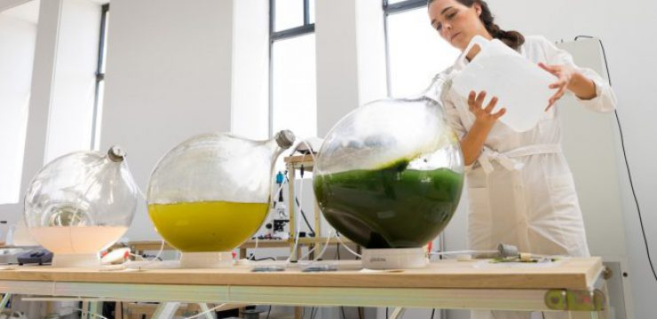 eric-klarenbeek-maartje-dros-change-system-dutch-design-week-algae.jpg