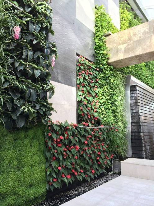 Living wall at Galleria Mall