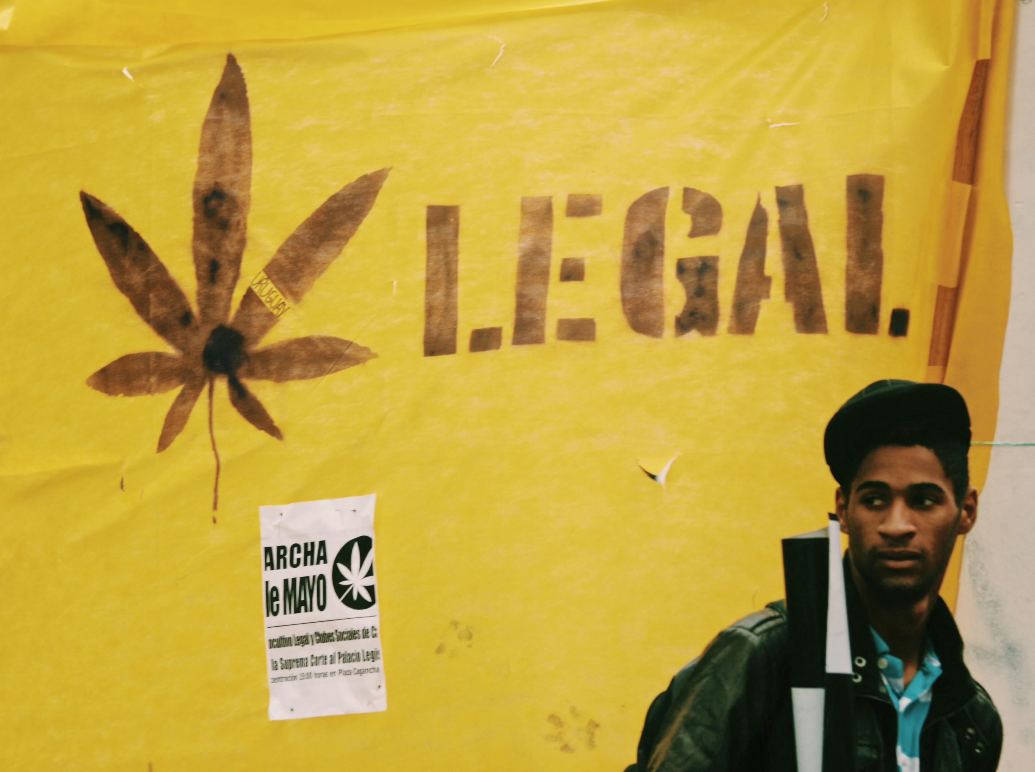 legalize cannabis sign, man in front of yellow cannabis sign