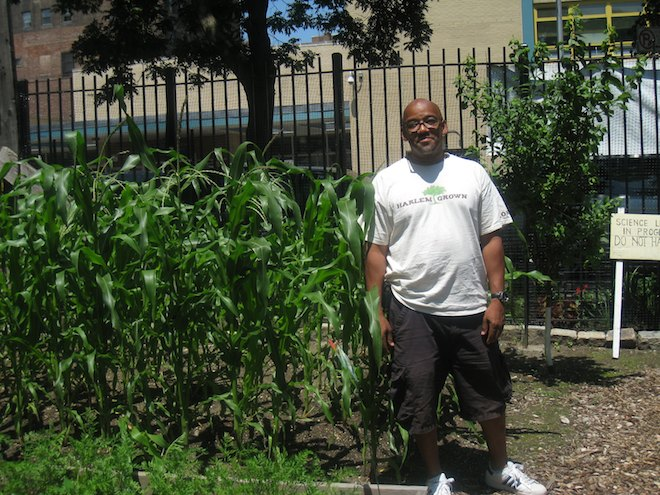 harlem-grown-urban-farm-hydroponic