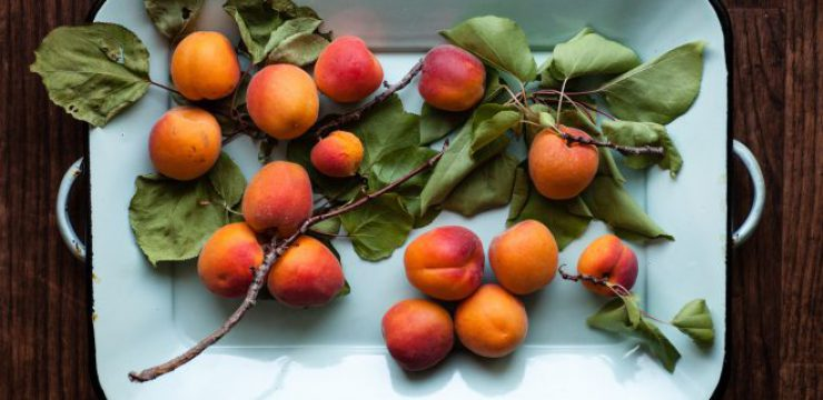 heather-gill-apricot-scaled.jpg