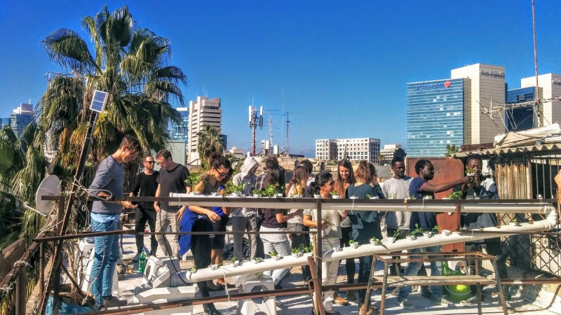 Refugees plant roots in world's first hydroponic community garden ––in Tel Aviv