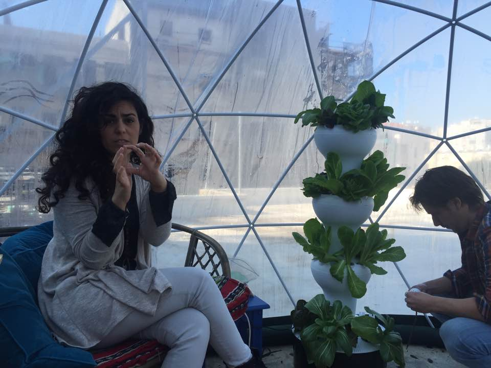 Turkish Designer Creates Coolest Greenhouse For Urban Farmers In Tel Aviv The Blogs