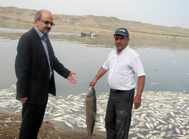 Raw human sewage murders millions of fish in Iran