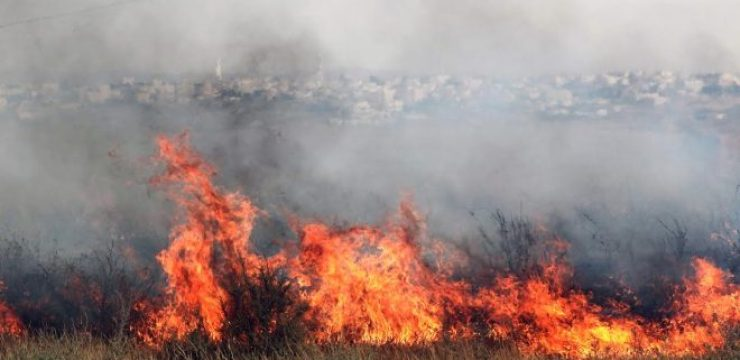 israeli-brush-fire.jpg