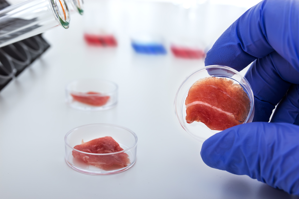 Lab Grown Meat Companies Lab-grown or 'cultured' Meat