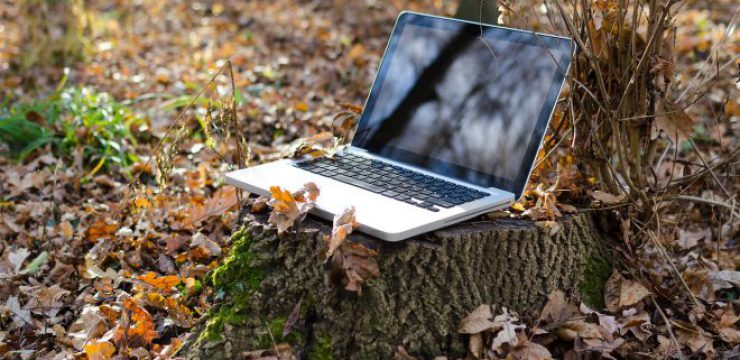 laptop-in-the-leaves.jpg