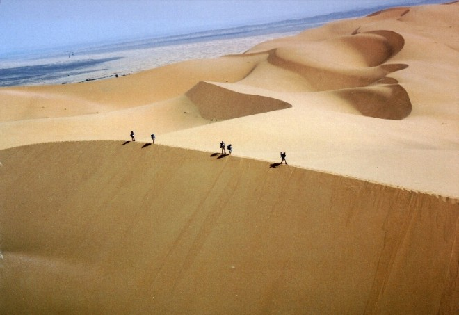mds-runners_on_dune.jpg