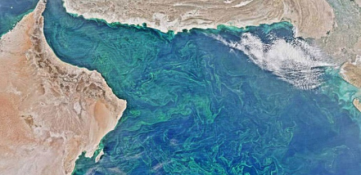 nasa-deadzone-arabian-sea.jpg