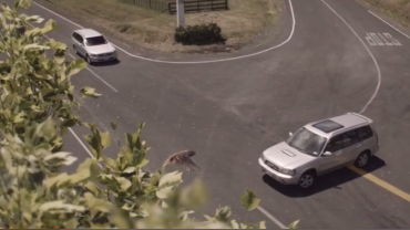 This video will scare you into driving slower