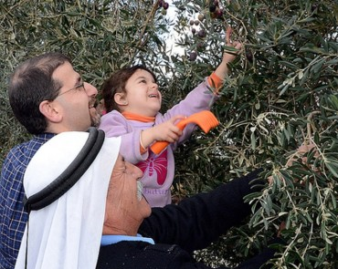 Olive Oil Without Borders has a recipe for Middle East peace