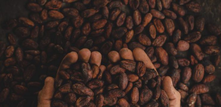 pablo-merchan-montes-sustainable-commodity-cacao.jpg