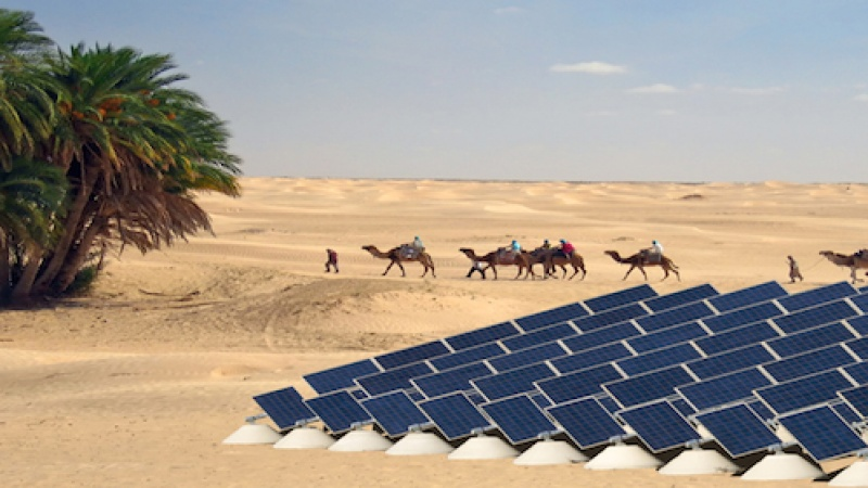Moving to Qatar? For the eco-friendly expat