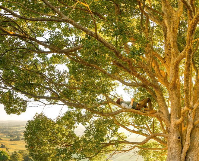 hanging out in a tree, woman on branch of large tree