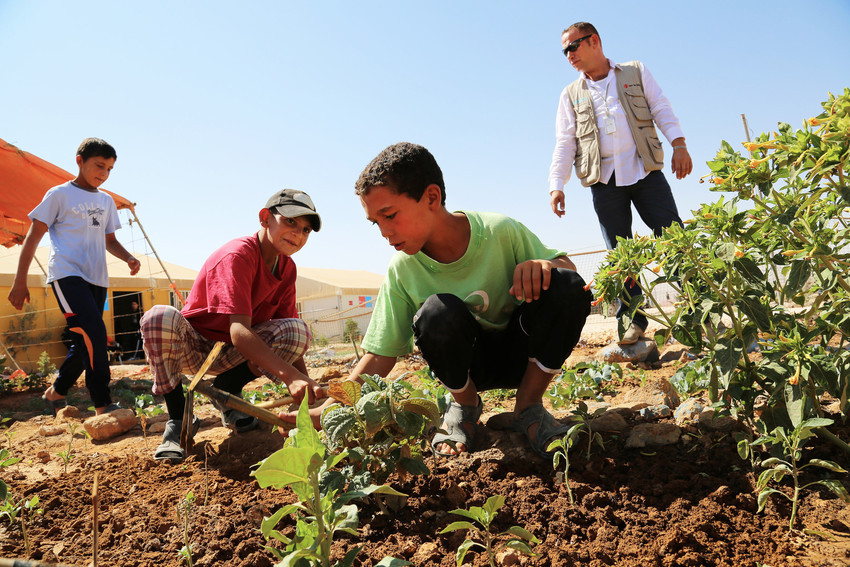 syria-refugee-secret-garden-10