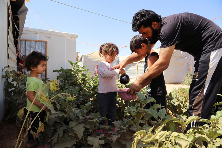 syria-refugee-secret-garden-4