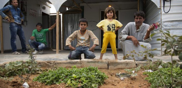 syria-refugee-secret-garden-7.jpg