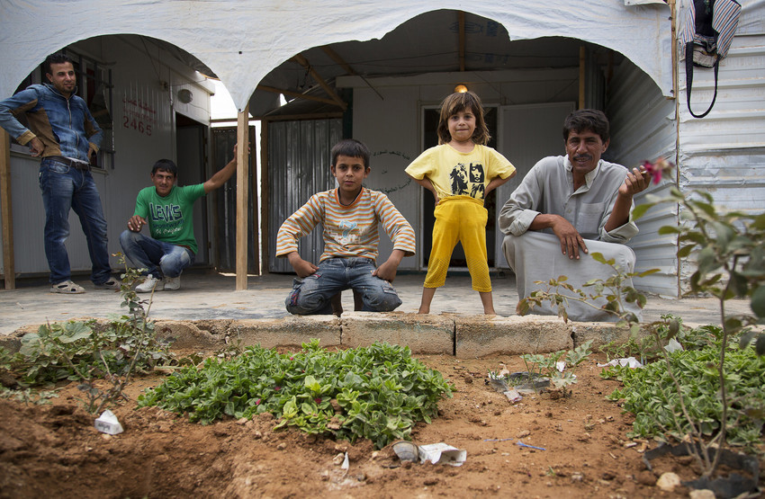 syria-refugee-secret-garden-7